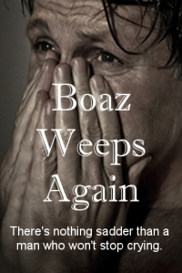 How my husband envisions Boaz's book.