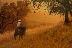 historical romance and cowboy